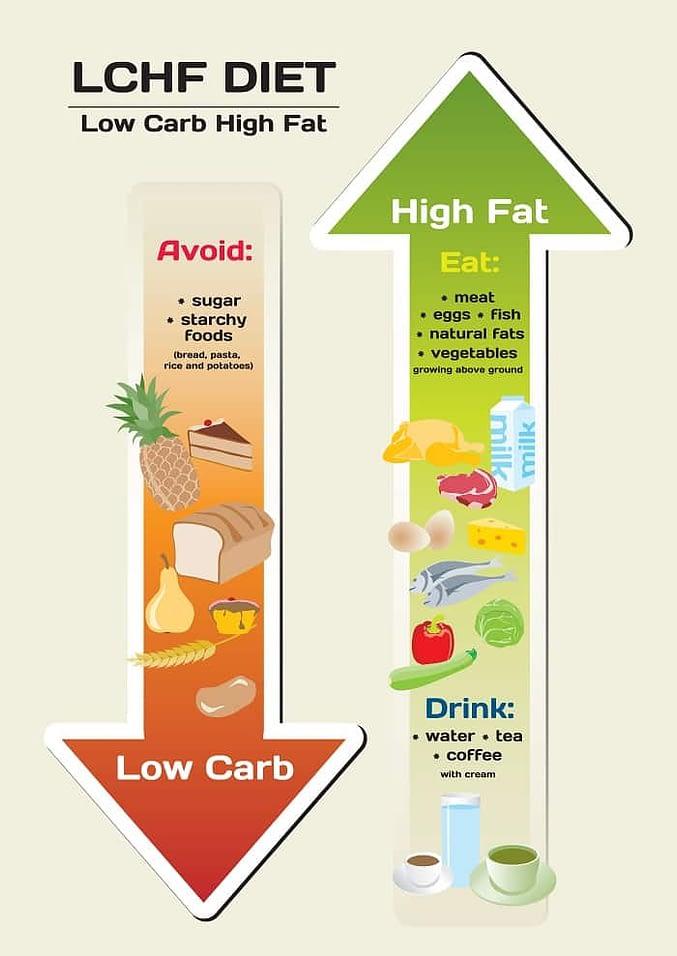 lchf diet