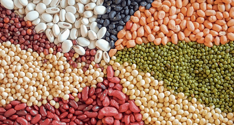 beans carbohydrates