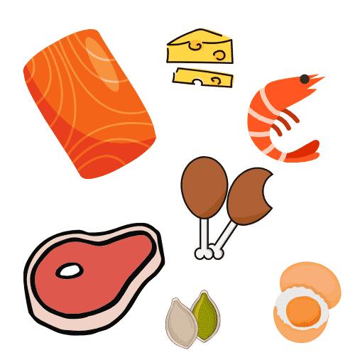keto diet proteins